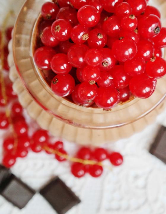 Mousse au chocolat mit Johannisbeere