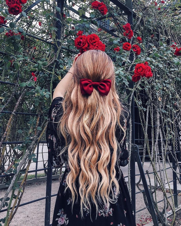 Schloss-Schönbrunn-Rosengarten-Rosen-Instagram-Haar-Inspiration
