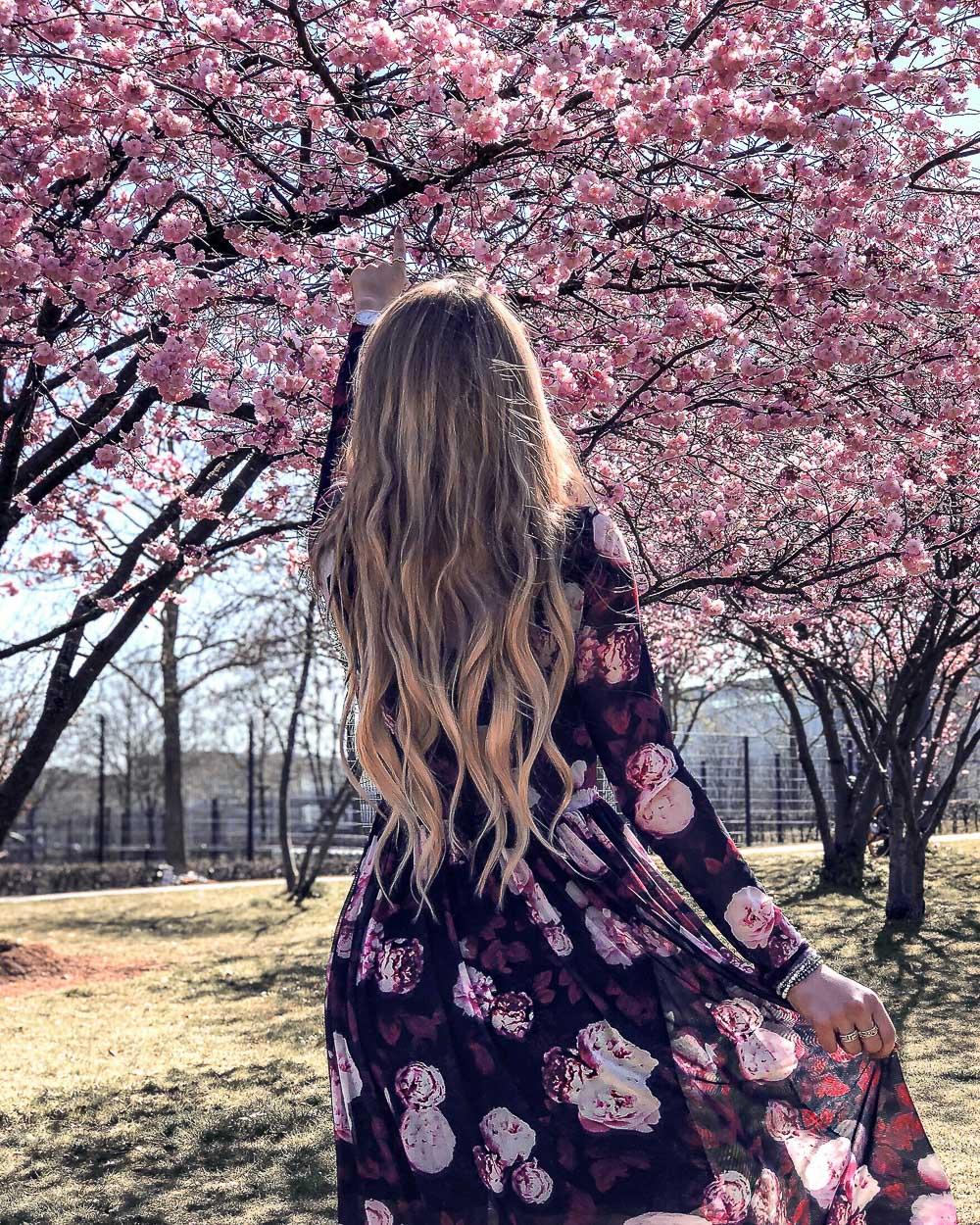 Kleid mit Rosenmuster-Kirschblütenbäume München
