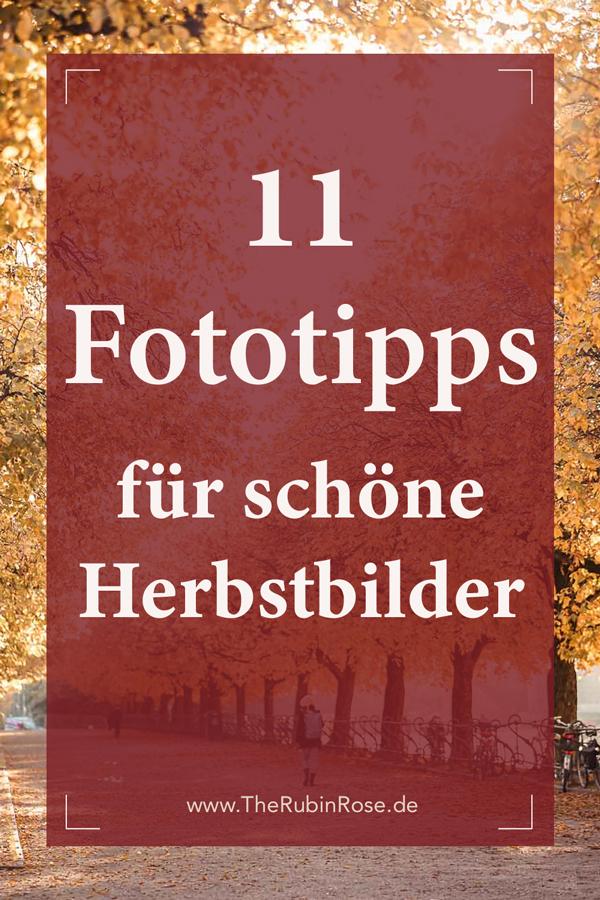 Pinterest Grafik: 11 Fototipps schöne Herbstbilder in der Natur
