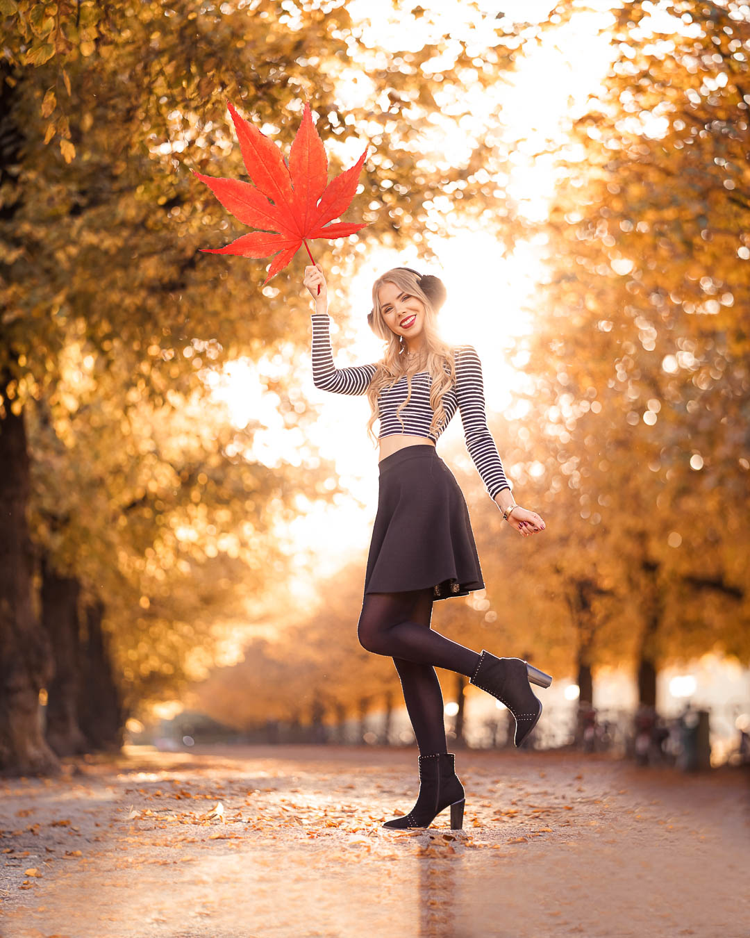 Baum Allee im Herbst, kreative Fotoidee
