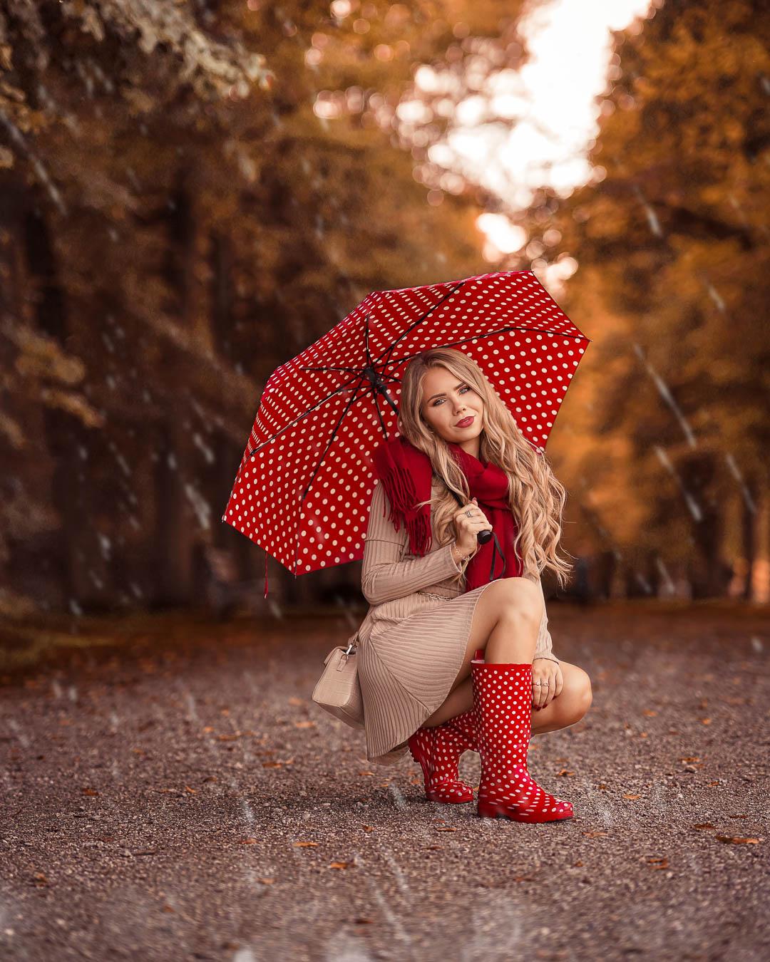 Herbstbilder bei Regenwetter im Wald