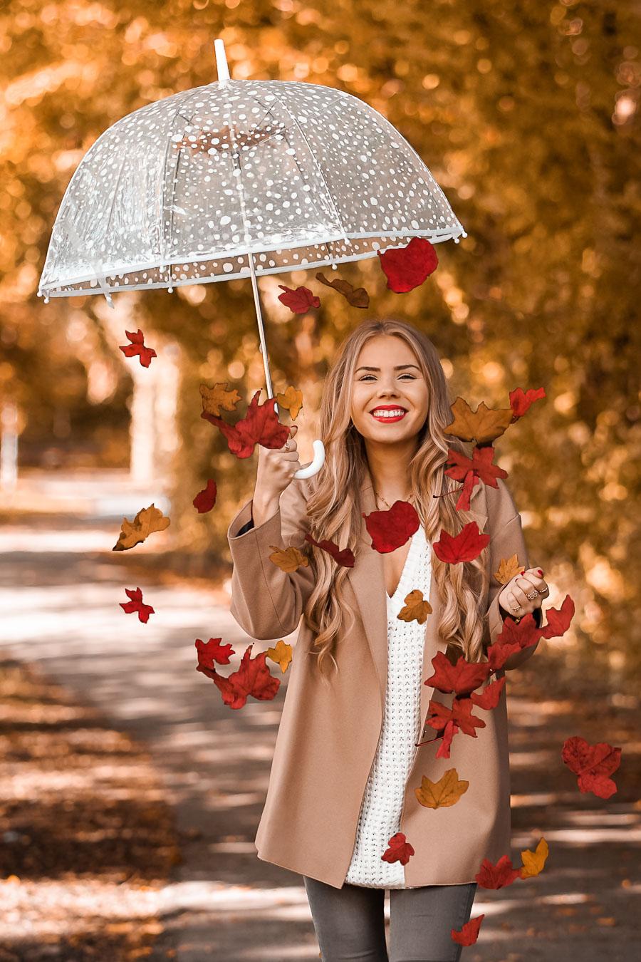 Regenschirm aus dem bunte Herbstblätter fallen